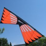 Masterpiece - Sainz Wings 1