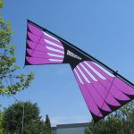 Masterpiece - Sainz Wings 2