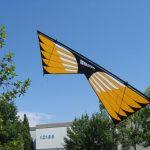 Masterpiece - Sainz Wings 3