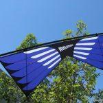 Masterpiece - Sainz Wings 5