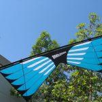 Masterpiece - Sainz Wings 6