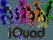 Team iQuad
